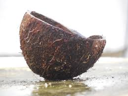 Coconut shell carbon filters – an eco-friendly approach to